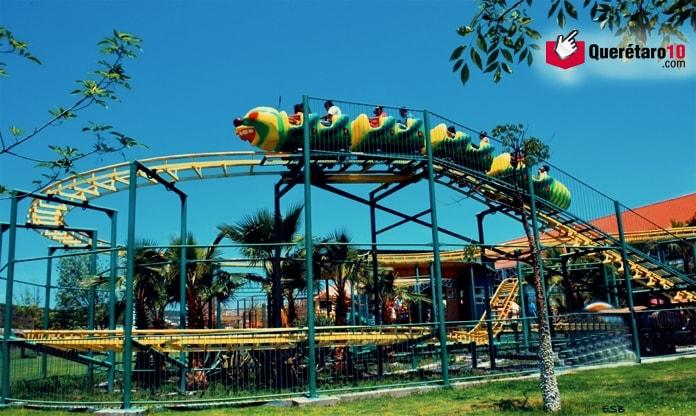 Gusano-Parque-Bicentenario